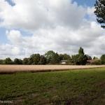 adams-LRG-village-9