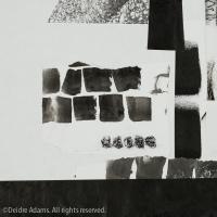adams-ws-paper-studies4