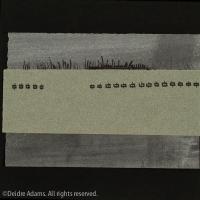 adams-ws-paper-studies7-2