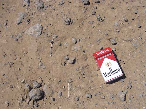 adams-marlboro.jpg