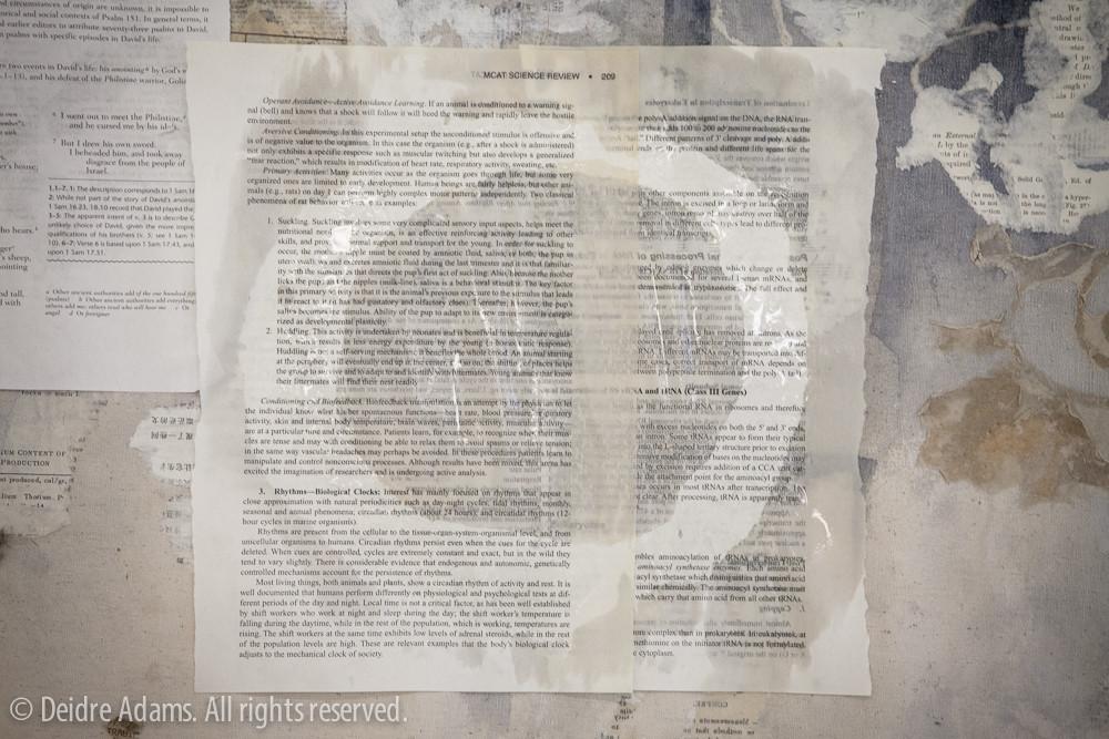 Adams-VSC-paperwork-4