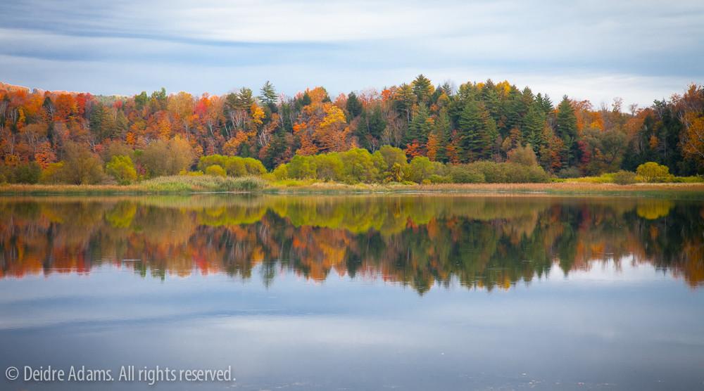 Vermont-0270-3
