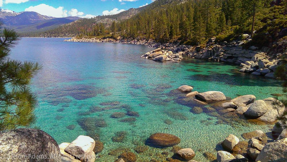 Adams-Tahoe-1
